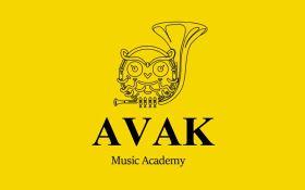 آموزشگاه موسیقی آواک